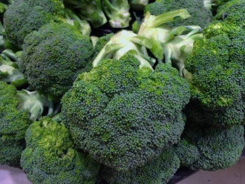 brokuły ekologiczne
